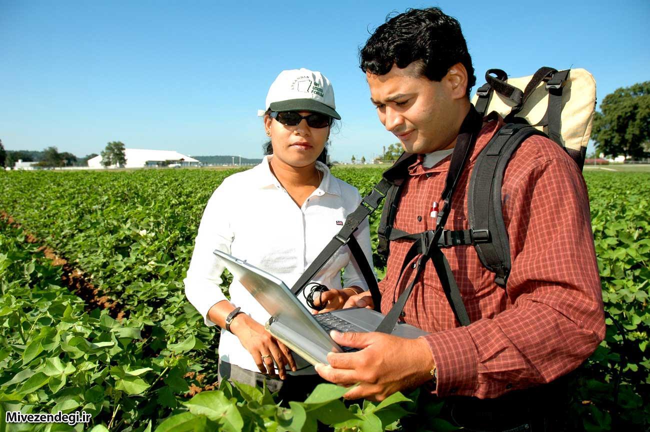مهندسی کشاورزی(معرفی رشته،شغل،گرایش ها،فرصت های شغلی)