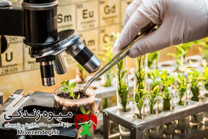 کارشناسی گیاه پزشکی